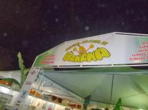 Festa da Banana Borborema4