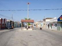 ARARA_PB