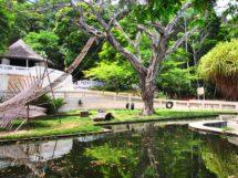 Parque Arruda Câmara 01