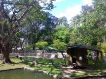 Parque Arruda Câmara 03