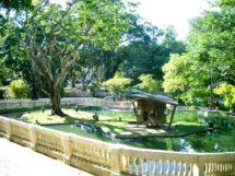 Parque Arruda Câmara 04