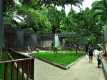 Parque Arruda Camara 10