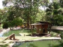 Parque Arruda Camara 14