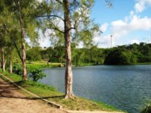 Parque Arruda Camara 16