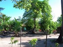 comunidade quilombola Paratibe