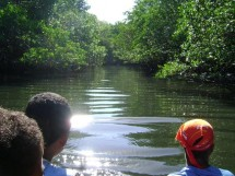 mangue na comunidade quilombola do paratibe