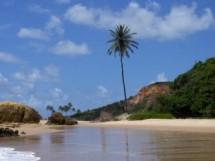 Praia de Carapibus 03
