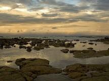Praia de Carapibus 09