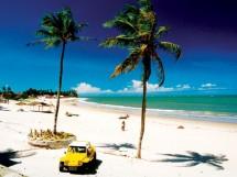 Praia de Jacumã  10