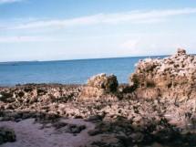 Praia de Jacumã  12