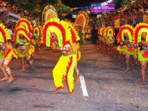 carnaval_tribo_indigena_tupi_guarani_mandacaru4