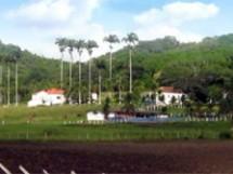 Alagoinha_Estação Experimental_13