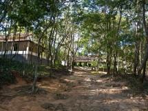 Estação Ecologica Pau Brasil 03