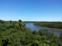 Floresta Nacional da Restinga - Mata da Amém_Cabedelo_9