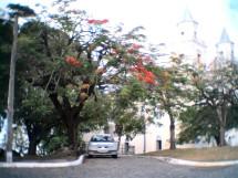 Praça Dom Ulrico_3