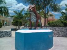 São João do Tigre_7