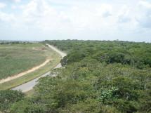 Reserva Biológica Guaribas 02