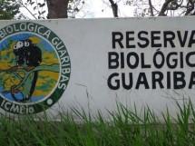Reserva Biológica Guaribas 10