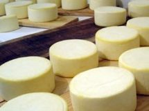 Festa do Queijo Boa Vista_queijo_de_coalho