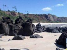 Praia da Barra de Gramame_14