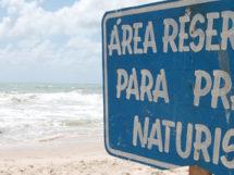 Praia de Tambaba_11