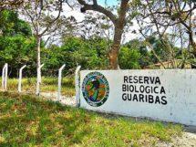 Rio Tinto_Reserva Guaribas_23