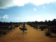 Assentamento Dona Antonia_05