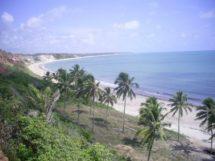 praia-de-pitimbu_5