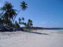 praia-de-pitimbu_6