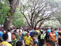 Carnaval do Complexo Cachoeira 19