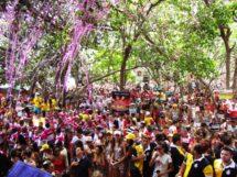 Carnaval do Complexo Cachoeira 3