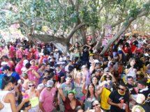 Carnaval do Complexo Cachoeira 6