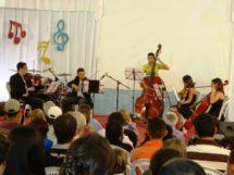 Orquestra de Cordas da FELC 8