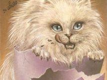 D um gato com gosto de pinto