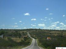 Estrada- Baraúna