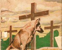 Manoel Pereira- O cachorro dos mortos