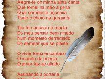 Thiago Alves2