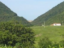 Nova Olinda