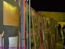 FACC- Festival de Arte e Cultura em Coxixola-PB 5