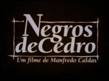 negrosdecedro5