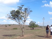 Fazenda Nossa Senhora das Neves. Mulungu-PB(2)