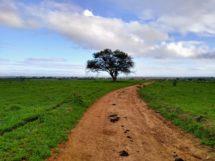 Fazenda Nossa Senhora das Neves. Mulungu-PB(4)