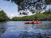 Parque Ecológico do Caranguejo-Uçá